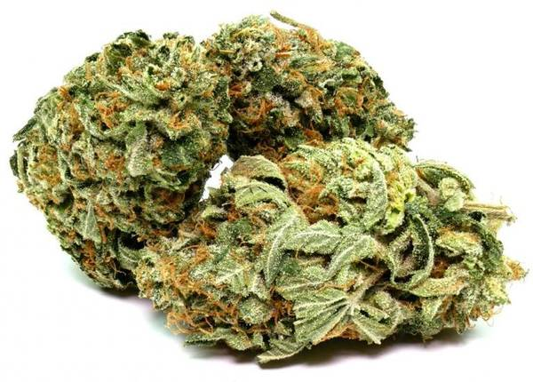 Medical Weed Dispensary Vancouver