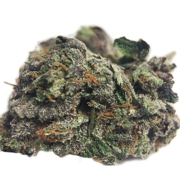 Jamaican Haze Weed Available In In Toronto