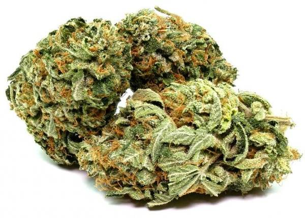 Can You Buy Recreational Weed In Toronto