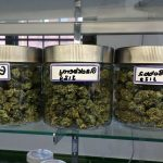 Find Hobo Weed Store Ottawa Numbrr | ON
