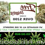 ▷ Kd Weed Mississauga | Ontario | Canada