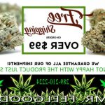 ▷ Best Buy Weed Accessories Mississauga | ON